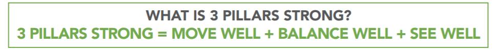 Z-Health 3 Pillars Strong